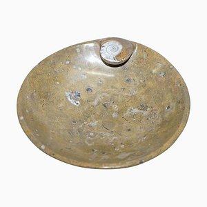 Marokkanische dekorative Ammonit Fossil Schale in Marmor Optik, Atlas-Gebirge