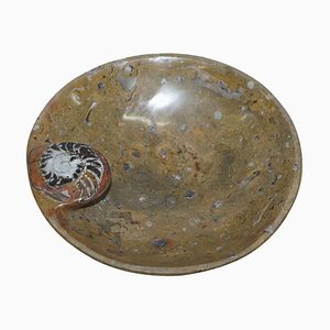 Moroccan Decorative Ammonite Fossil Bowl in Marble Finish, Atlas Mountains
