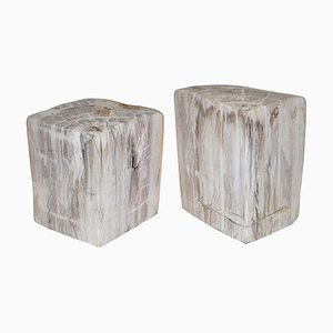 180 Million Year Old Petrified Fossil Bookends or Doorstops, Set of 2
