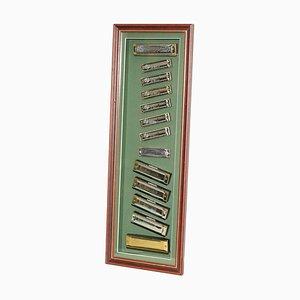 Vintage Harmonika Set aus Chrom & Vergoldung von Hohners, Swan & Marine