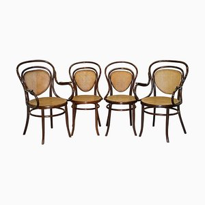 Bentwood Bergere Armchairs by Jacob & Josef Kohn for Thonet, Set of 4