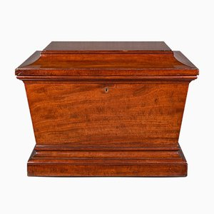 Large Regency English Sarcophagus Cellarette or Wine Cooler in Mahogany