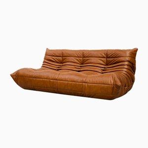 Vintage Dark Cognac Leather Sofa by Michel Ducaroy for Ligne Roset
