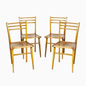 French Birch Dining Chairs, 1950s, Set of 4