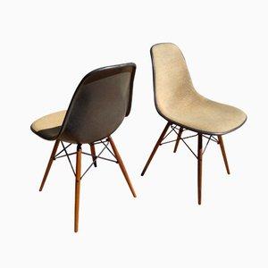 Graue DSW Stühle von Charles und Ray Eames für Herman Miller, 2er Set