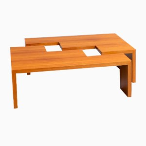 Square Wooden Trapezium Coffee Table from Leolux, 1990s