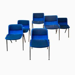 Blue Dining Chair by Osvaldo Borsani