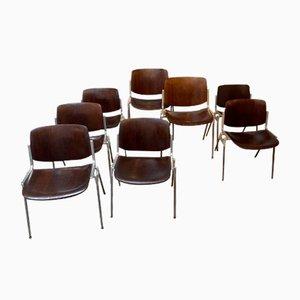 Esszimmerstühle von Castelli / Anonima Castelli, 8er Set