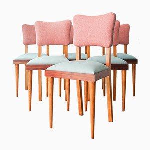 Esszimmerstühle von Olaio, 1950er, 6er Set
