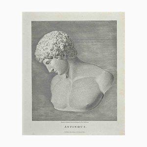 Thomas Holloway, Portrait of Antinous, Etching, 1810