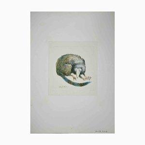 Leo Guide, Lemur, Zeichnung, 1971