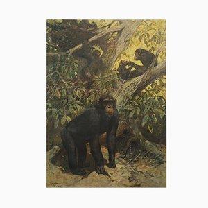 Deutsches Schimpansen Schulposter
