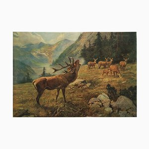 German Vintage School Poster Deer