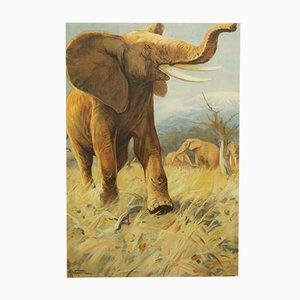 Póster escolar alemán vintage de un elefante