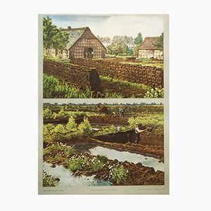 Vintage German School Poster Peat Extraction