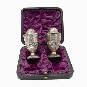 Englisches silbernes Salz- und Pfefferstreuer-Set, 1840er