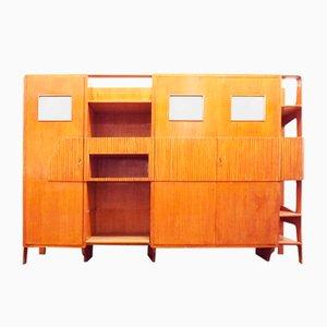 Mueble multifuncional al estilo de Ico Parisi, Italia, 1950