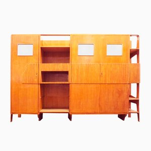 Multifunctional Cabinet in the Style of Ico Parisi, Italy, 1950