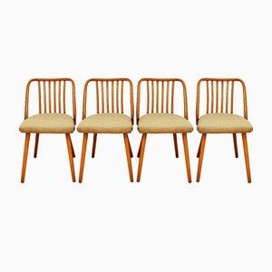 Chairs by A. Suman for Tatra Nabytok, Czechoslovakia, 1960s, Set of 4