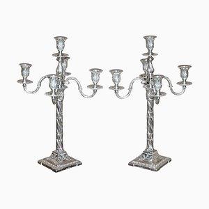 Sterling Silber Candelabra Kerzenständer von Henry Wigfull, 1904, 2er Set
