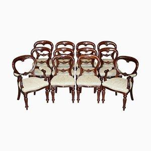 Medallion Esszimmerstühle aus geschnitztem Hartholz, 12er Set