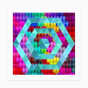 Dadodu, Color Hexagon, Giclée, 2013