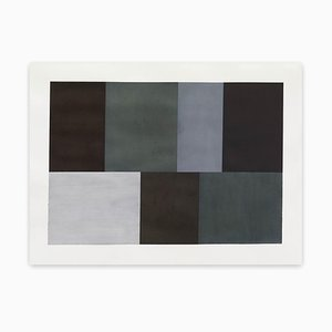 Test Pattern 5, Grey Study, 2005