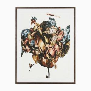 Renata Kudlacek, Metamorphosis Naturalis, Tulip III, 2018, Fine Art Print