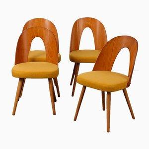Vintage Stühle von Antonin Suman, 1960er, 4er Set