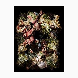 Tirage d'Art, Renata Kudlacek, Spectacular Specimen, 2021