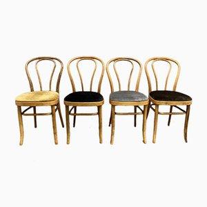Chaises de Salle à Manger de Thonet, 1950s, Set de 4