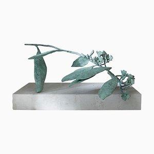 Euphorbia Sculpture 02 by Herma De Wit