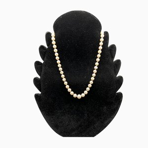 Pearl Necklace with Gold Closure