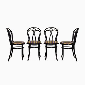 Chairs from Thonet, 1950s, Set of 4