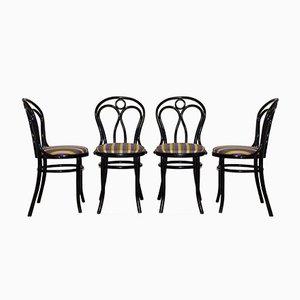 Stühle von Thonet, 1950er, 4er Set
