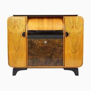 Record Player Cabinet by J. Halabala for Supraphon, 1958