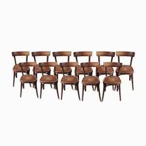 Bistro Dining Chairs, 1950s, Set of 15