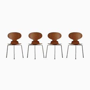 Dänische Ant Esszimmerstühle aus Teak von Arne Jacobsen für Fritz Hansen, 1960er, 4er Set