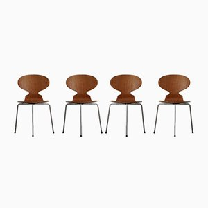 Sedie da pranzo Ant in teak di Arne Jacobsen per Fritz Hansen, Danimarca, anni '60, set di 4
