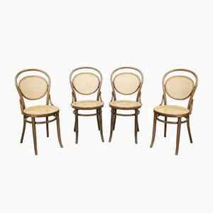 No. 15 Chairs by Michael Thonet for Thonet, Set of 4