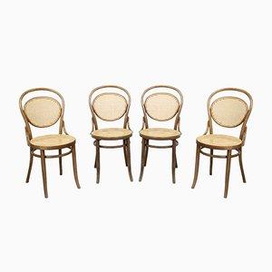 No. 15 Stühle von Michael Thonet für Thonet, 4er Set