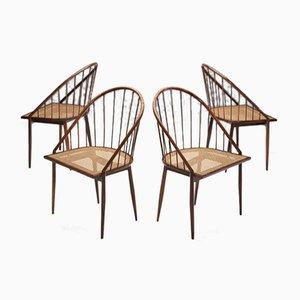 Mid-Century Curva Stuhl von Joaquim Tenreiro, 1960er, 4er Set