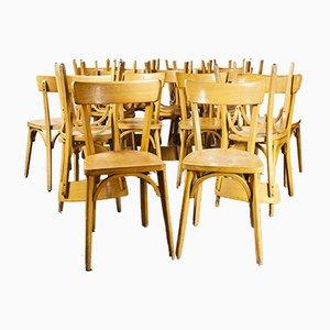 Französische Luterma Modell Ob Esszimmerstühle aus Bugholz von Marcel Breuer, 1950er, 24er Set