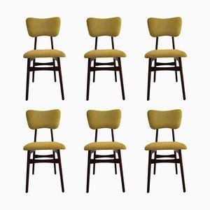 Stühle aus Senfwolle und Holz, 20. Jh., 1960er, 6er Set