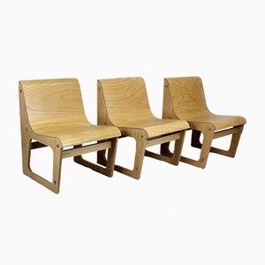 Symposio Beech Plywood Chair by René Šulc for Ton, 2010s