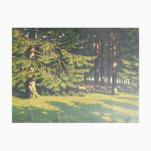 Dipinto di pecora nel bosco