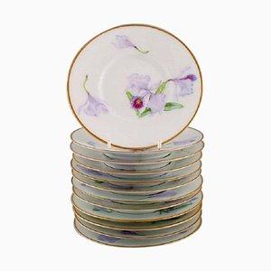 Antike einzigartige Royal Copenhagen Porzellanteller mit Irisblumen, 12er Set