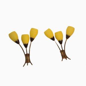 Apliques italianos de vidrio amarillo y latón, años 50. Juego de 2