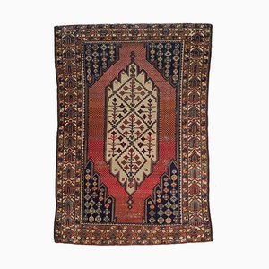 Floral Altrosa Rug with Border and Medallion