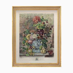 Pièce Fleur dans le Cabinet, Houghton, Jan Van Huysum, Gravure